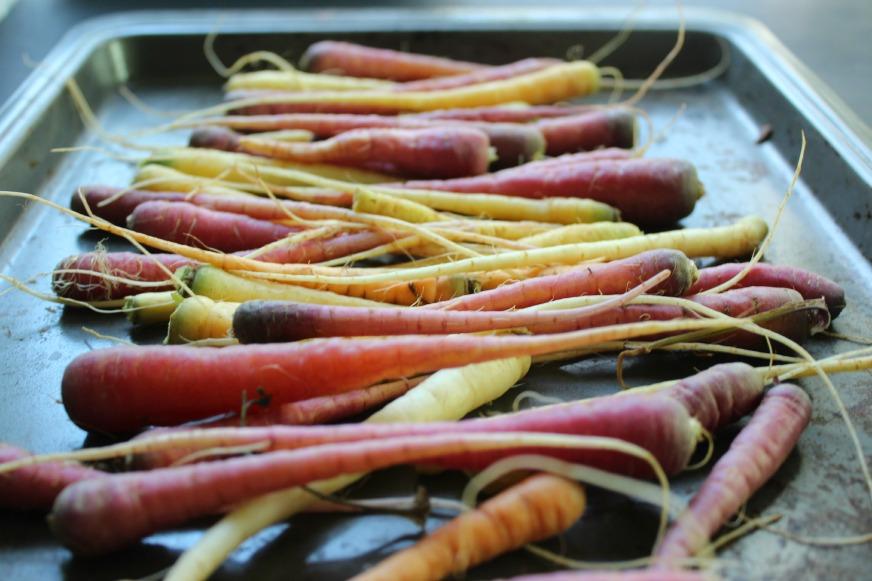 matchstick_carrots_vert.jpg