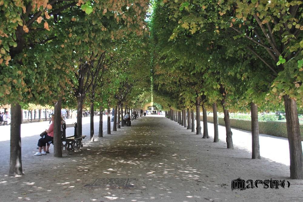 parisian park branded.jpg