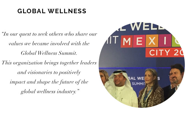 [Global Wellness Summit]