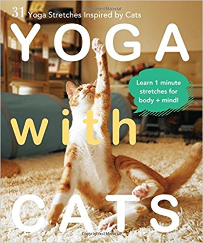 Yoga with Cats: 31 Yoga Stretches Inspired by Cats   // Inspired by the movements of her own feline friend, author and yogi Masako Miyakawa has created Yoga with Cats, which features simple, cat-like yoga stretches and poses.