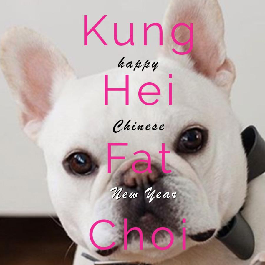KUNG HEI FAT CHOI.jpg