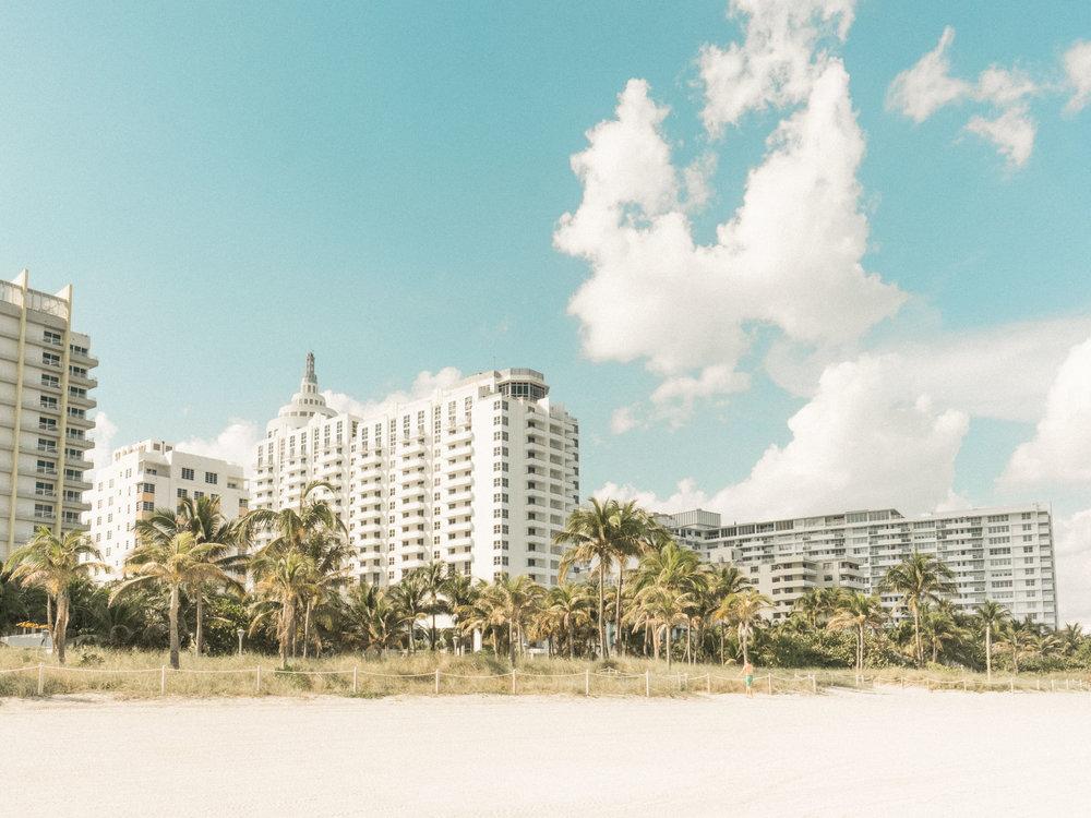 Miami_Beach_Street_5.jpg