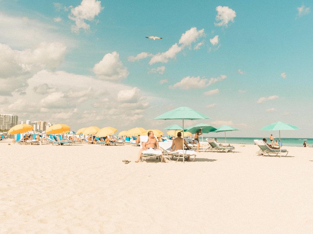 Miami_Beach_Street_14.jpg