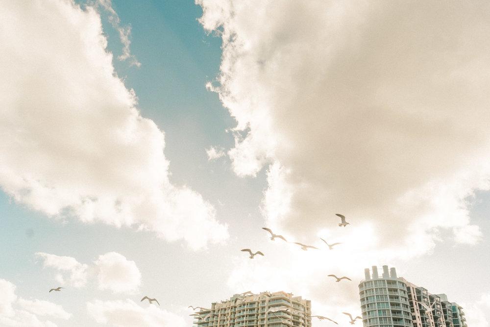 Miami_Beach_Street_42.jpg