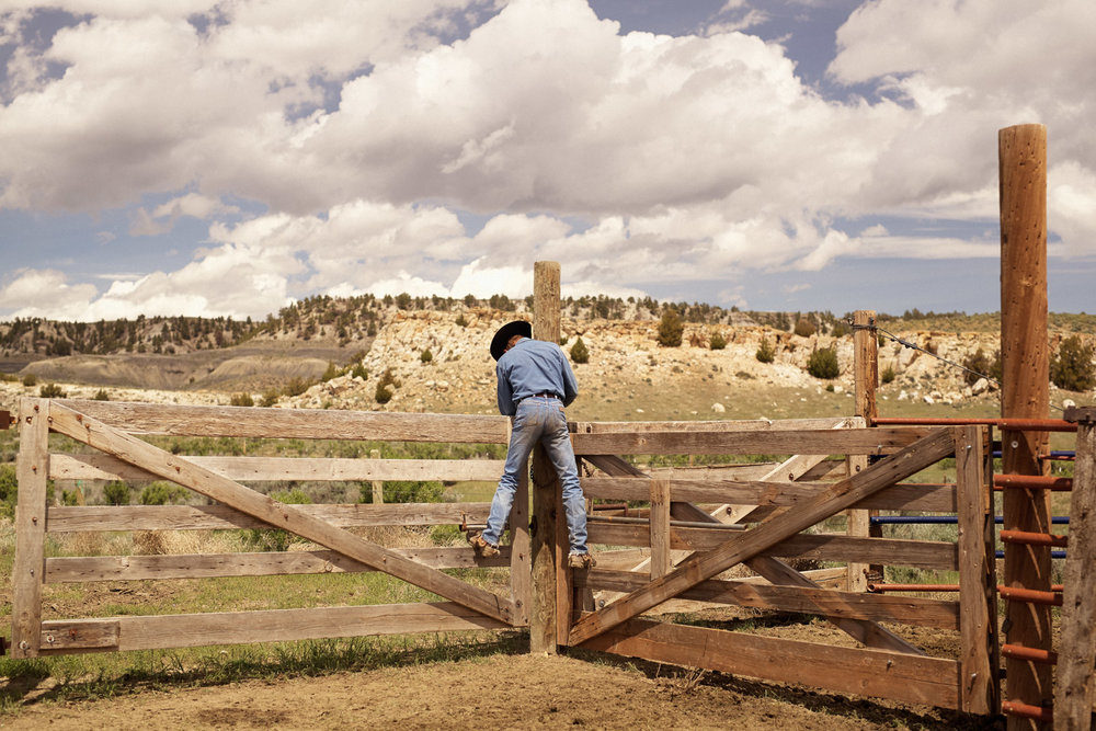 Kaycee, WY: Photography by Seth Lowe, 2015. Cowboy life in Wyoming.