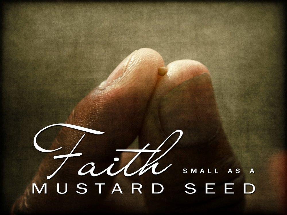 mustard-seed-faith.jpg