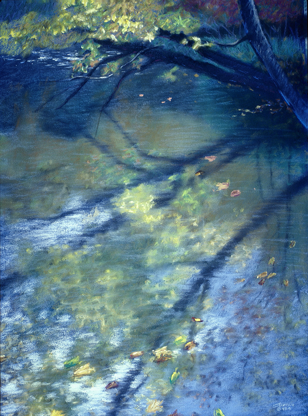 Reflections | pastel on paper | 23 x 16"
