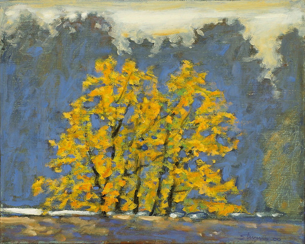 Trees Along the Shore   | oil on canvas | 15 x 12"