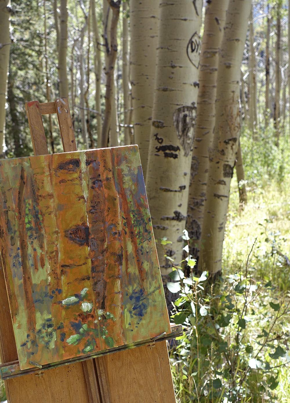 on the Norski trail in Santa Fe, NM