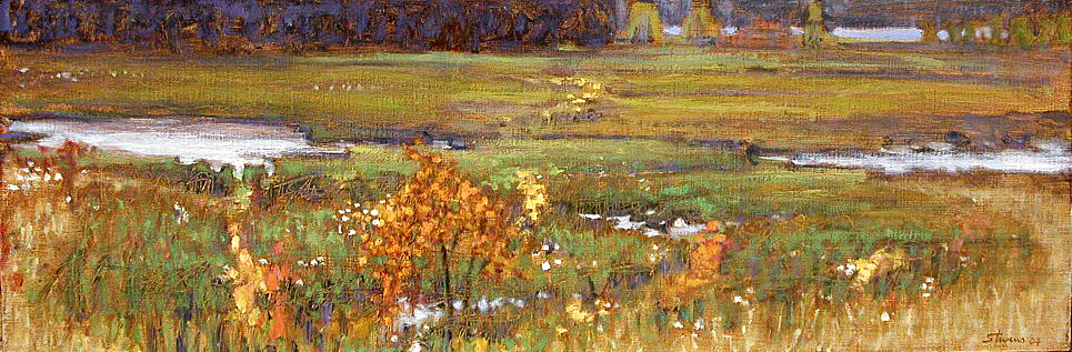 Saul's Lake Bog   | oil on linen | 10 x 30"