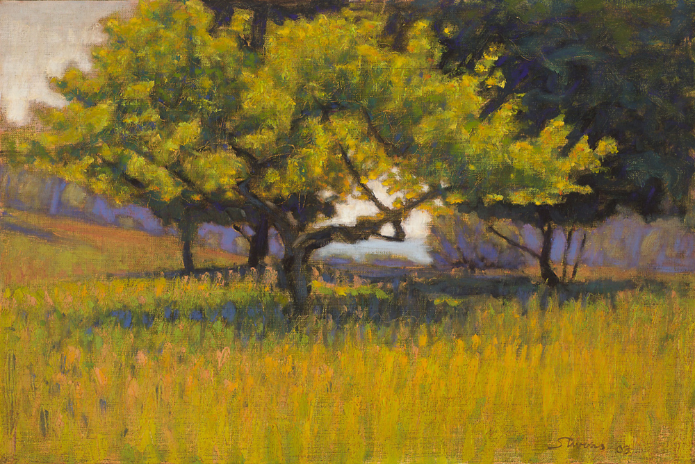 Riverside Park   | oil on canvas | 12 x 18"