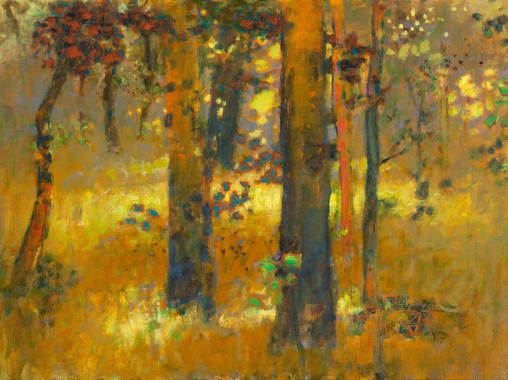 Afternoon Glow   | oil on linen | 12 x 16"