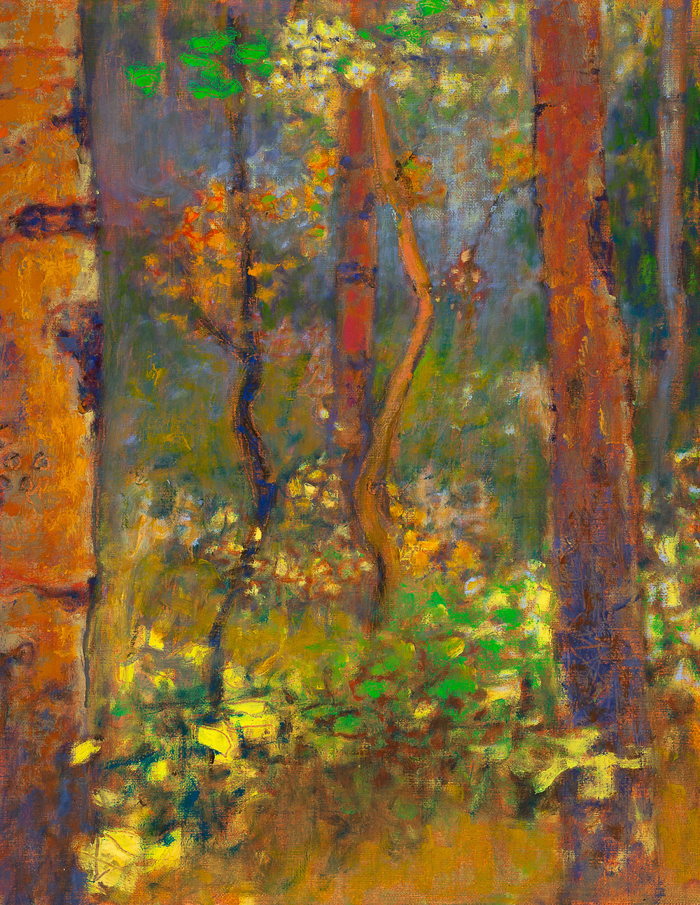 A Moment of Wonder   | oil on linen | 18 x 14"