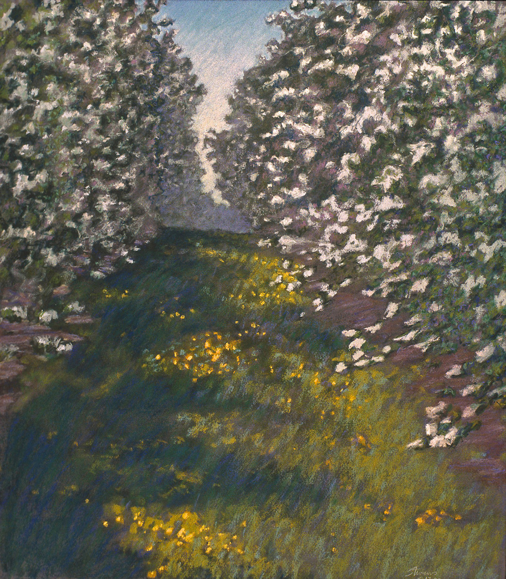 Orchard in Bloom | pastel on paper | 20 x 17"