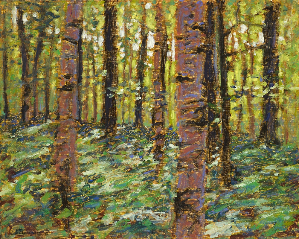 Forest Interior   | oil on canvas | 12 x 15"