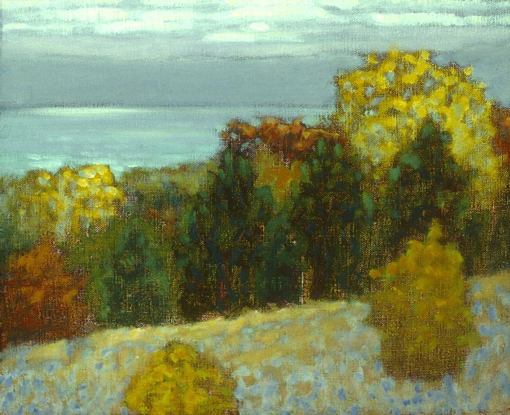 "Glen Lake | oil on canvas | 12 x 21"" | 1995"