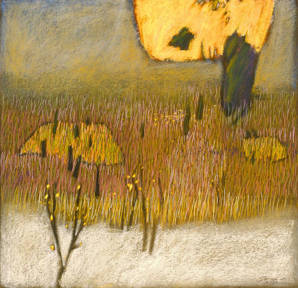 "Divine Pasture   | pastel on paper | 17 x 17"" | 1983"