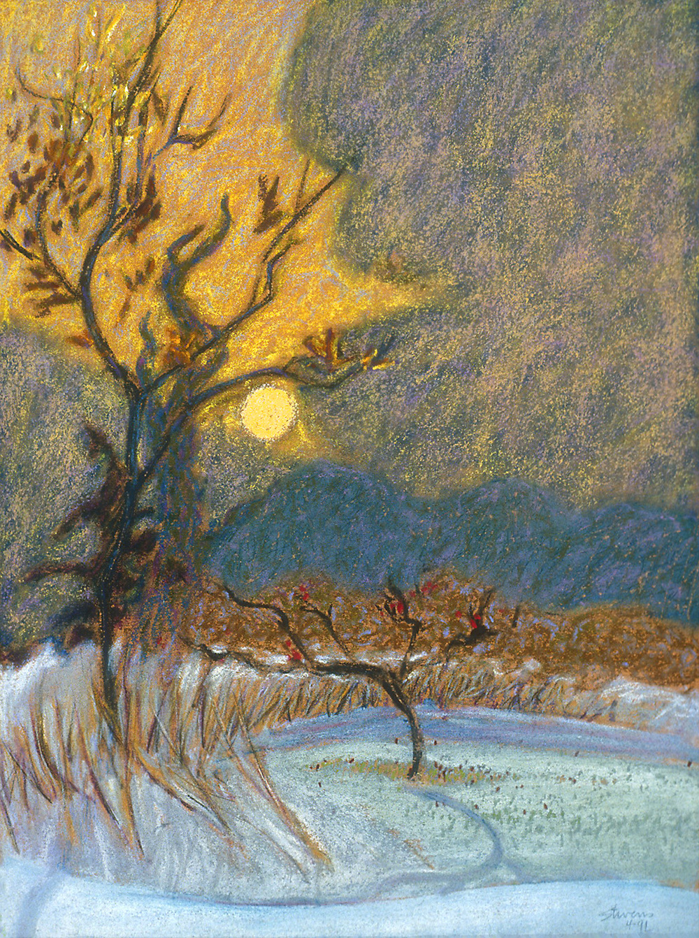 Low Sun, Early Winter   | pastel | 15 x 11"