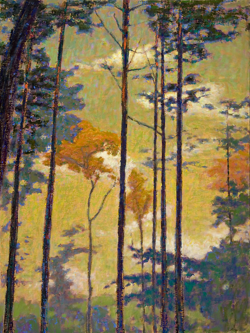 Trees and Sky II   | oil on canvas | 48 x 36"