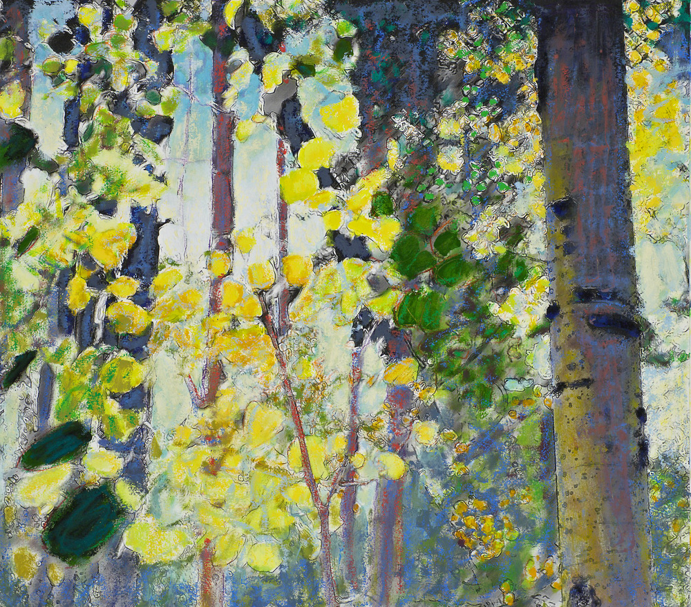 Autumn Aspens III   | mixed media | 18 x 20"