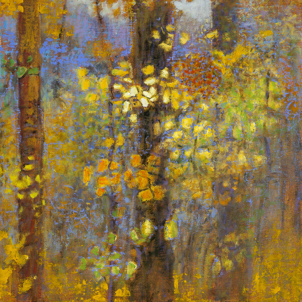 Quivering Aspens   | oil on linen | 18 x 18"