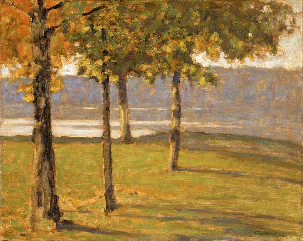 Long Lake Park   | oil on panel | 12 x 15"