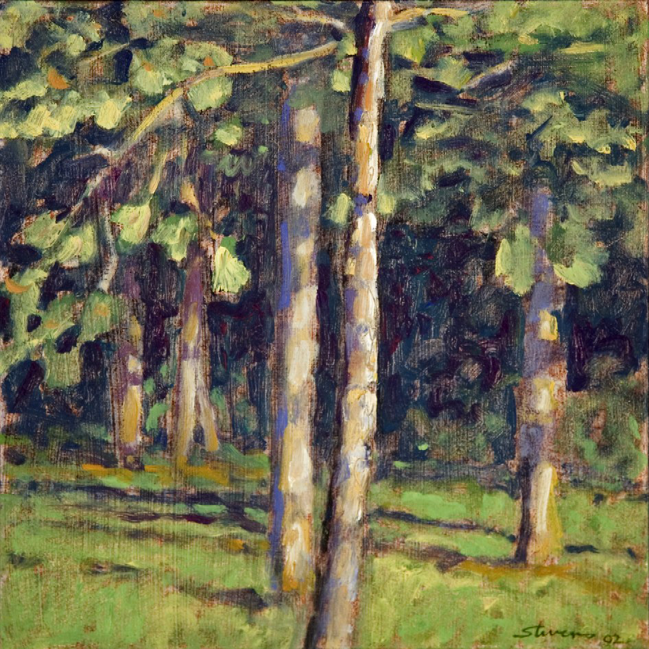 Pines in Evening Light   | oil on panel | 12 x 12"