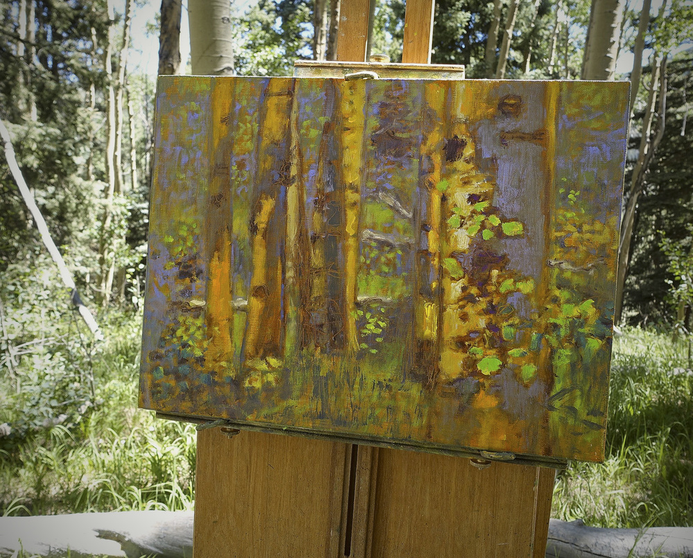 New aspen series in progress up on the mountain