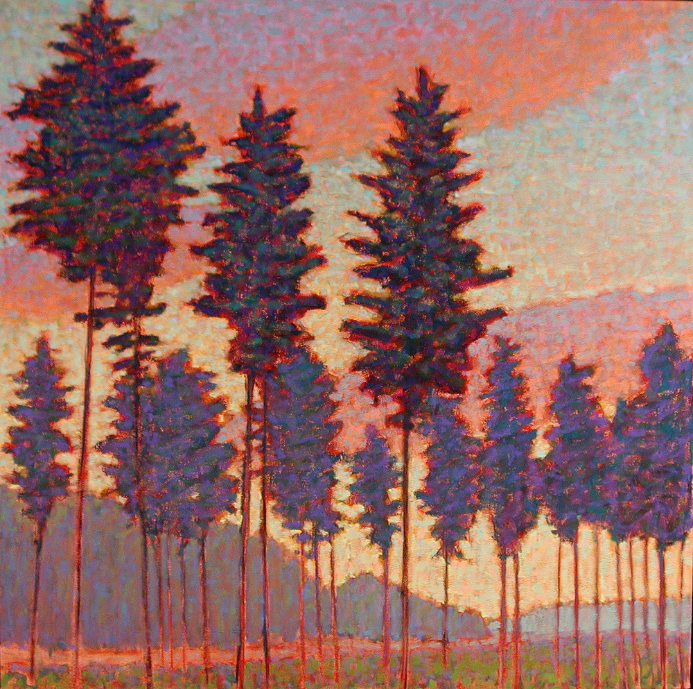 Tall Pines   | oil on canvas | 48 x 48"