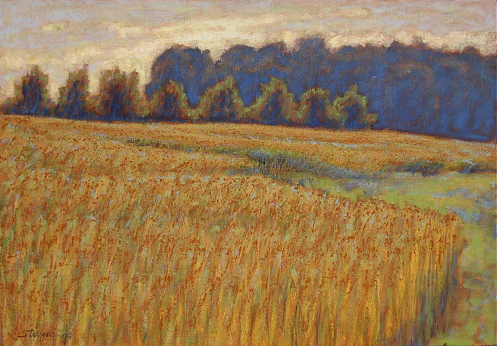 "Golden Field   | oil on linen | 14 x 20"" | 2004"