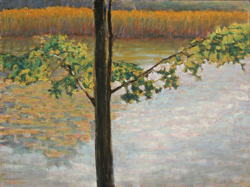 Tippy Pond   | oil on canvas | 18 x 24"