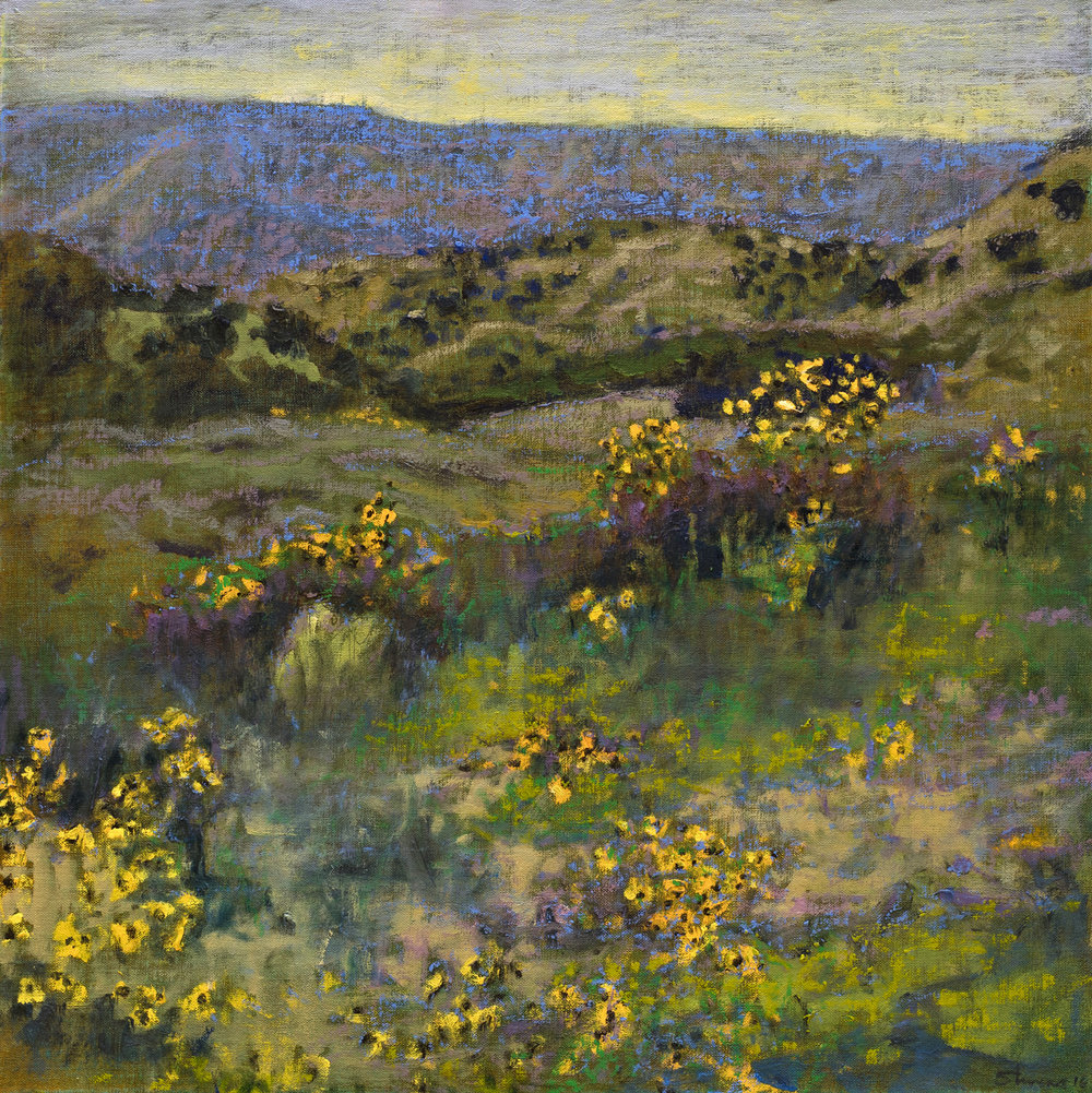 "Summer Fields | oil on linen | 18 x 18"" | 2016"