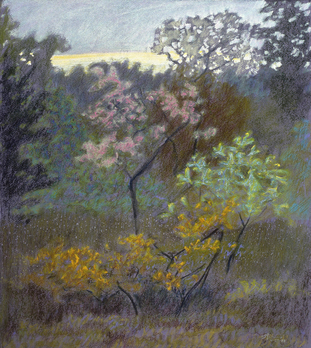 Afterglow   | pastel on paper | 17 x 15"