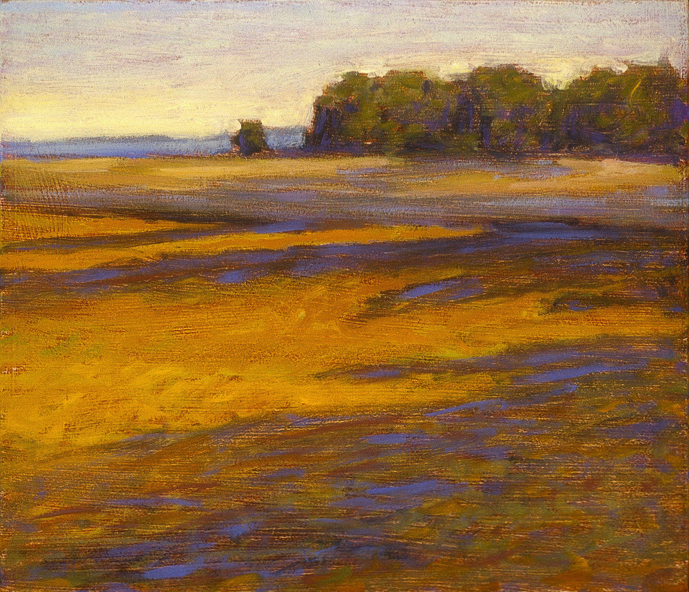 Anderson Field   | oil on canvas | 12 x 14"