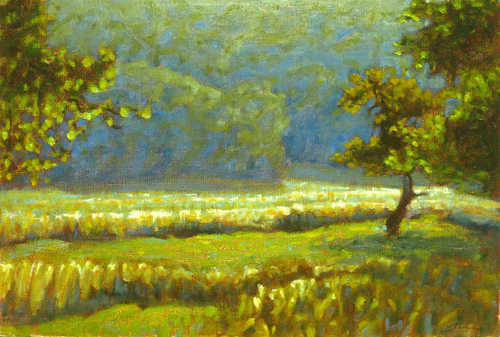 Apple Trees   | oil on canvas | 12 x 18"