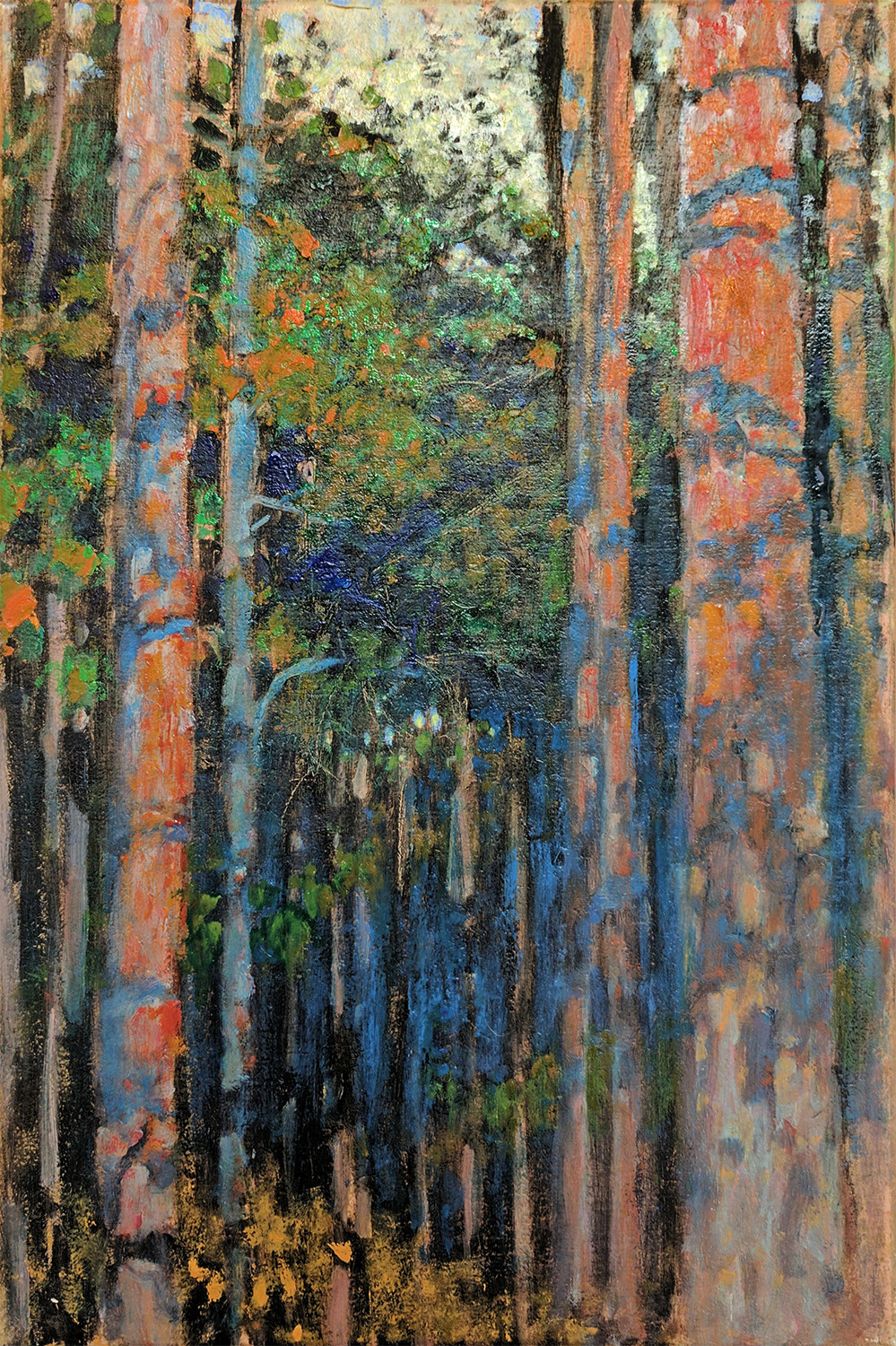 Pine Forest | oil on linen | 18 x 12"