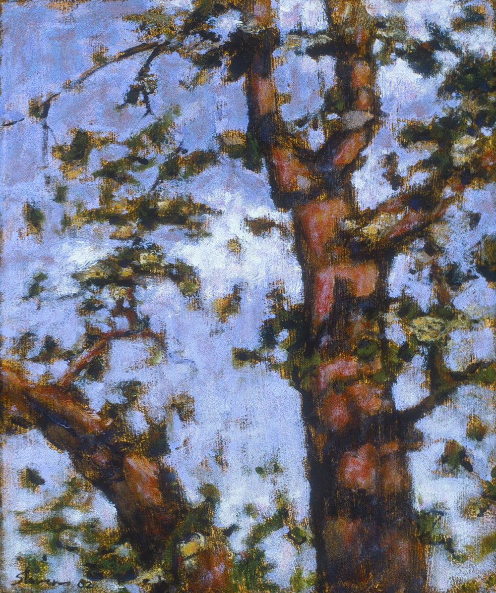"""Orchard by 8 Mile Road  