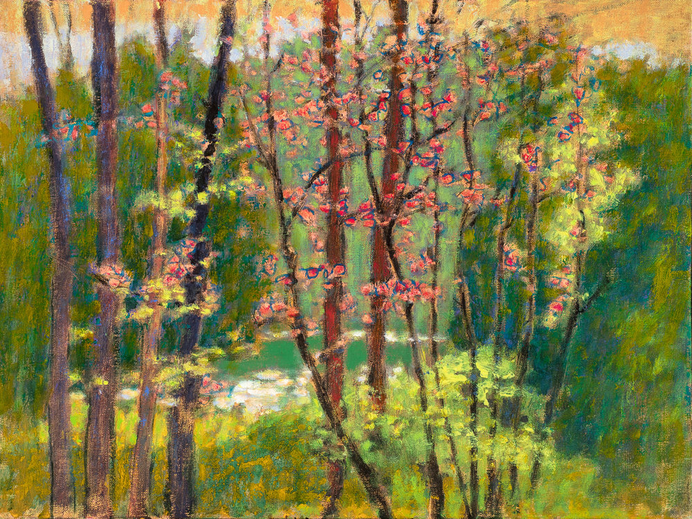 Cedar Creek in May  | oil on linen | 12 x 16"