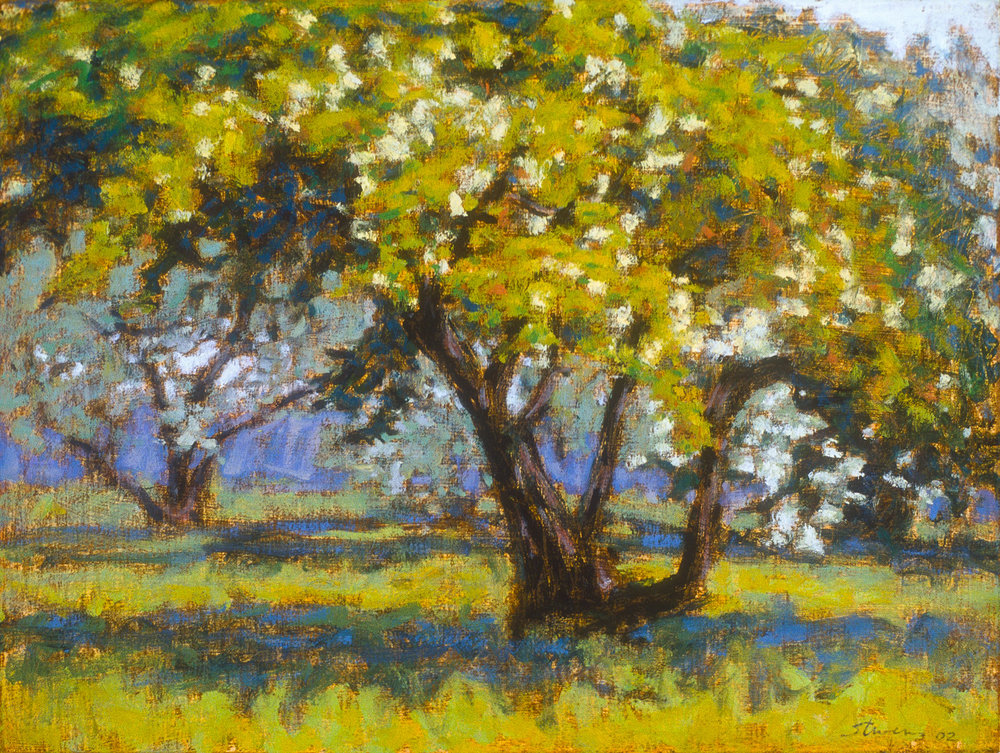 Orchard by 8 Mile | oil on canvas | 12 x 16"