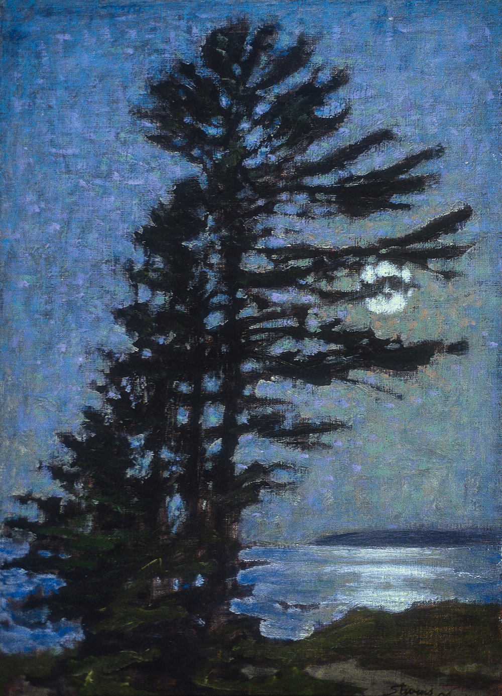 Nocturne  | oil on linen | 18 x 12"