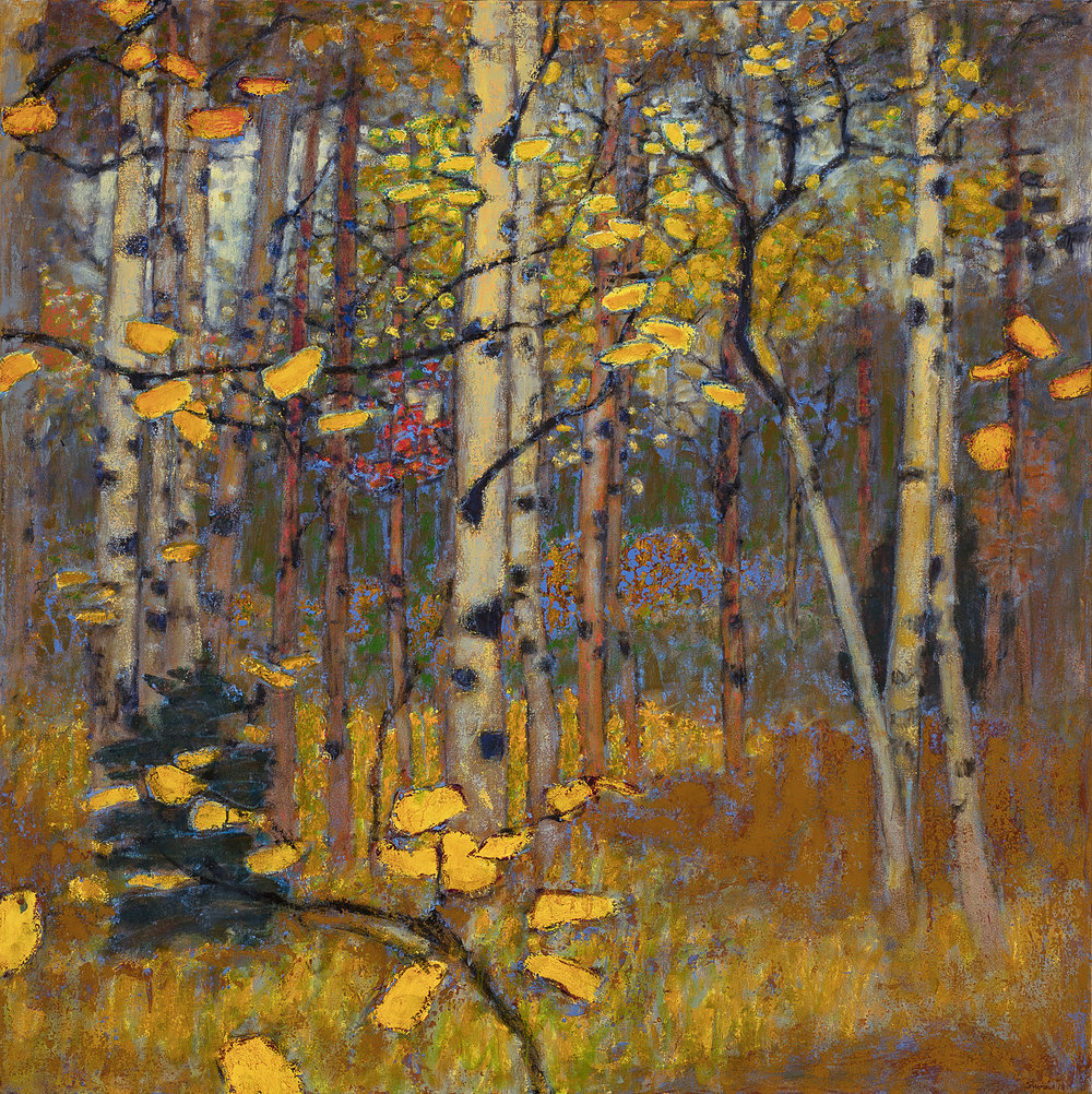"Aspen Grove in Fall   | oil on canvas | 48 x 48"" | 2018"