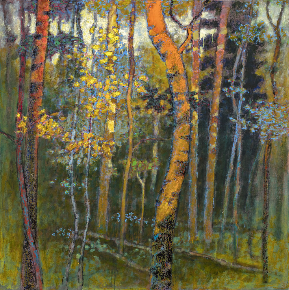 Last Light in the Hardwoods  | oil on canvas | 48 x 48"