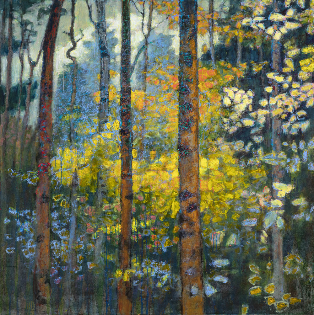 Rewilding | oil on canvas | 48 x 48"