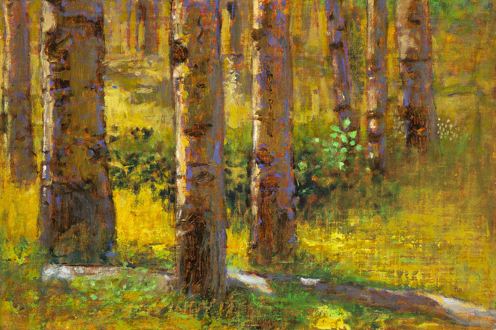 Aspens on the Hill   oil on linen | 12 x 18"