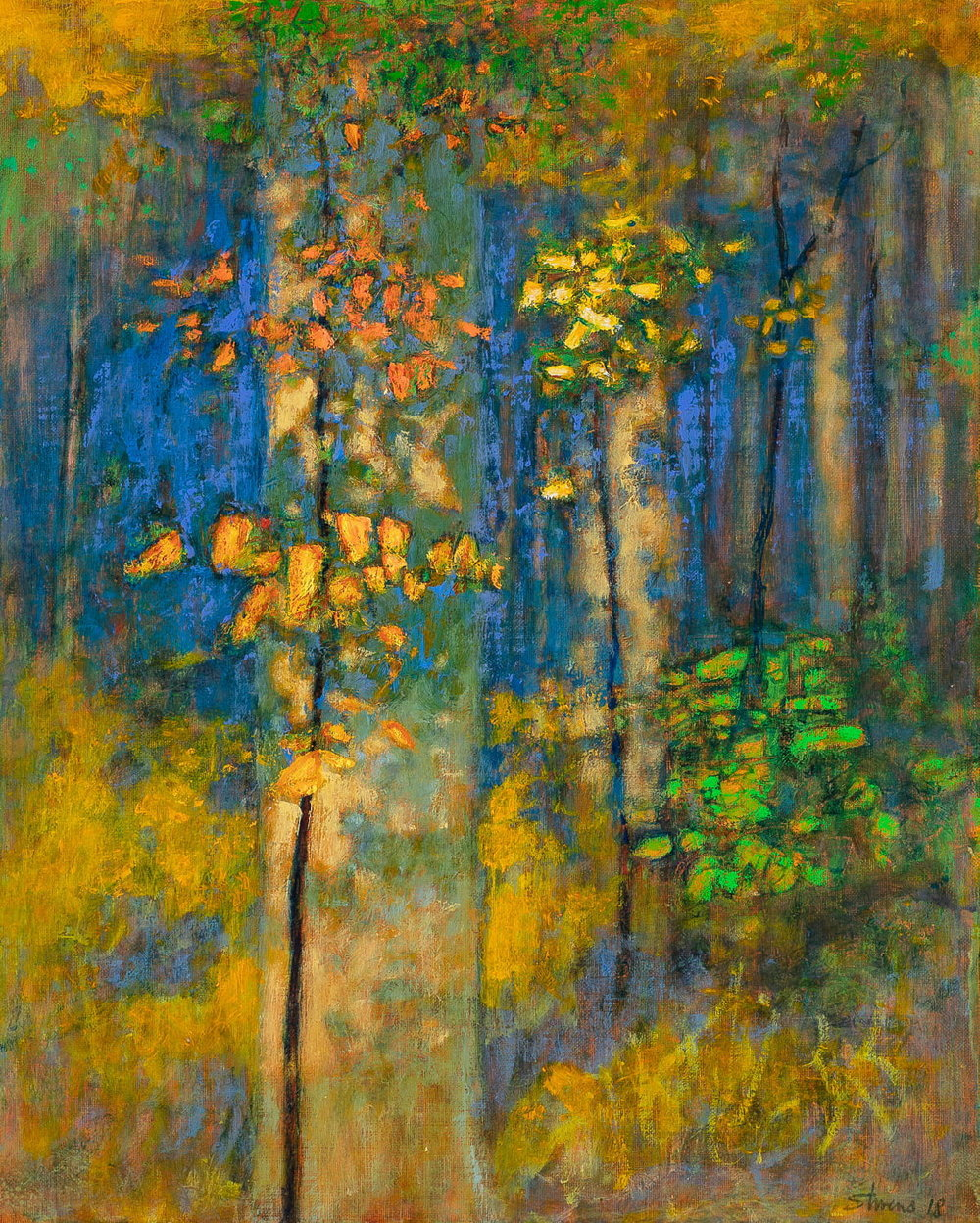 Sylvan Light  | oil on linen | 20 x 16"