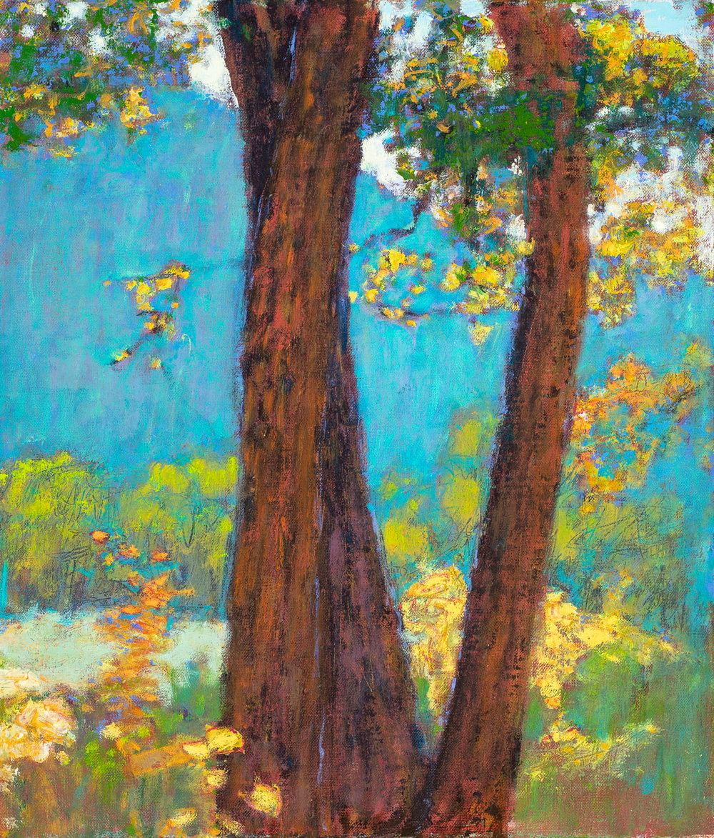 """Afdternoon Light (Gallina Canyon)  