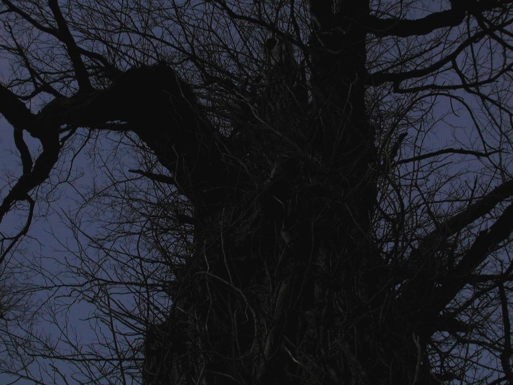 Black Figure on Blue, Independence, Virginia 2001