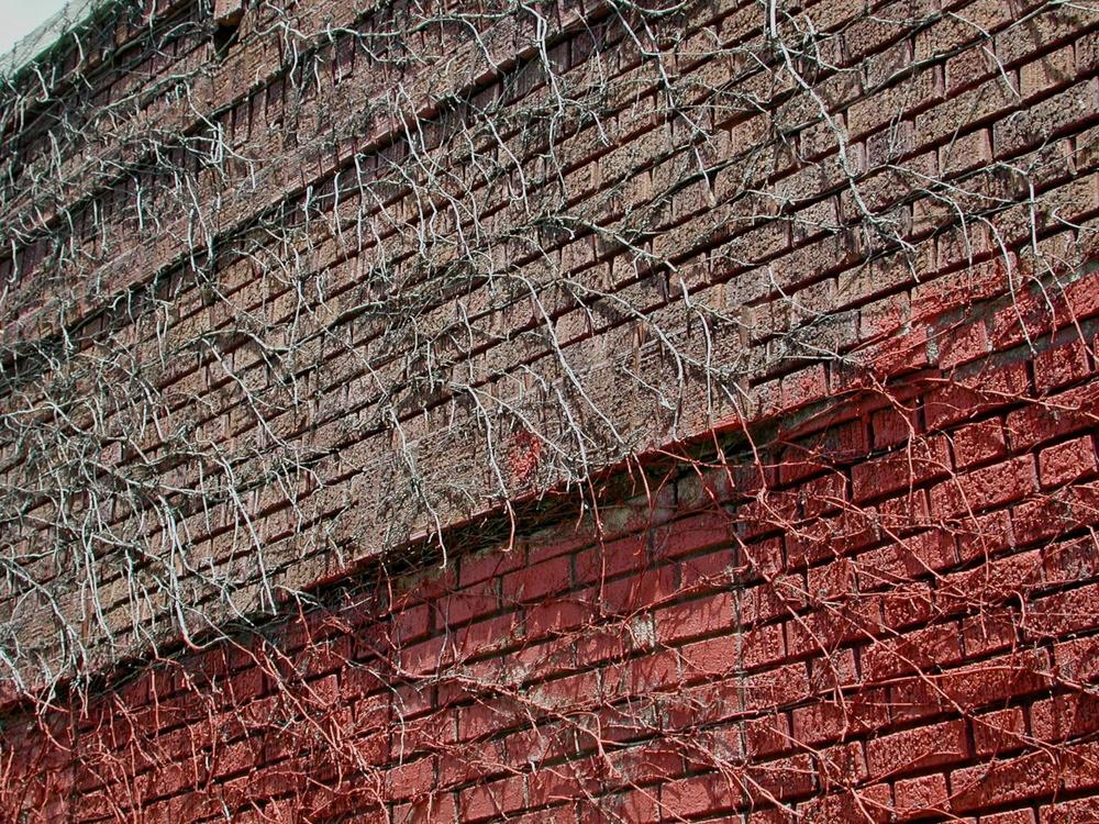 Red Trapezoid, Williamsburg, Brooklyn 2001