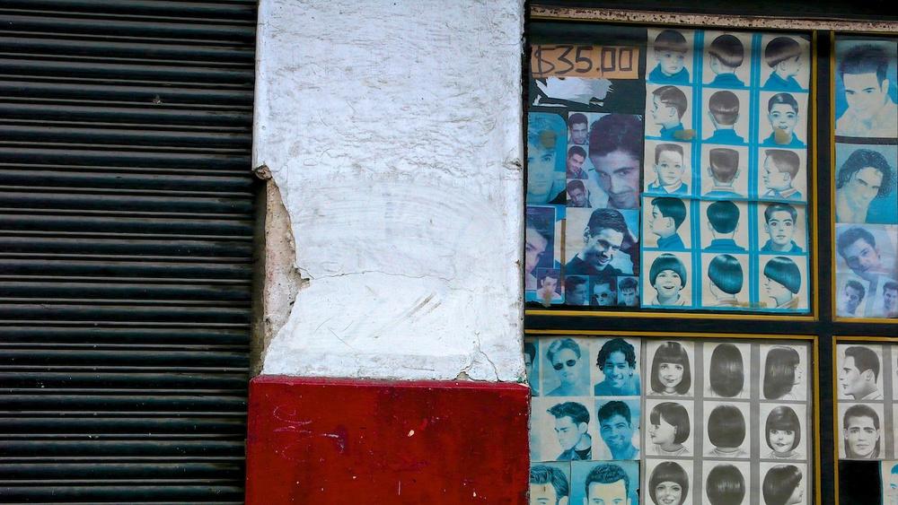 Red Rectangle with Bluish Heads, Guadalajara, Jalisco 2007
