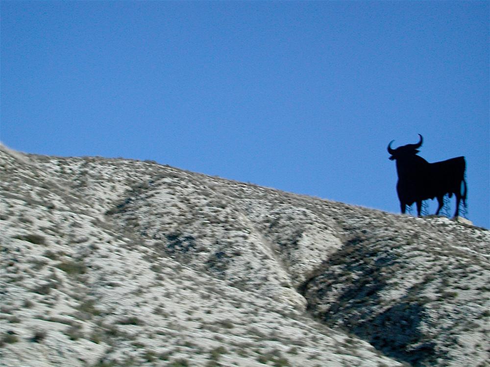 Toros  (2004)
